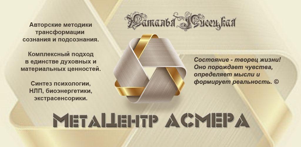 МетаЦентр Асмера